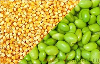 цены на кукурузу и бобы падают